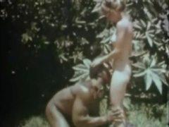 Schiavo, Antico, D'annata, Classico, Interraziale, Peloso, Retrò, Filmini porno, Bdsm
