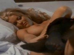 Erotic, Făcut acasă, Cordeală, Filme în albastru, Amatori, Senzual, Romantic, Sâni, Softcore, Bătând, Ţâţe mari, Orgasm, Singur, Dominare masculină, Afară, Public, Bidoane, Retro, Enorm